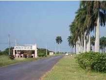 Municipio de Union de Reyes
