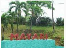Municipio de Mayari