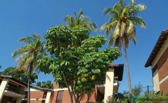 Versalles Hotel Hotels Guantanamo Cuba