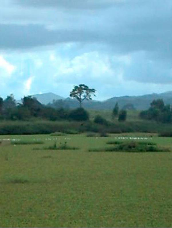 Embalse Barajagua