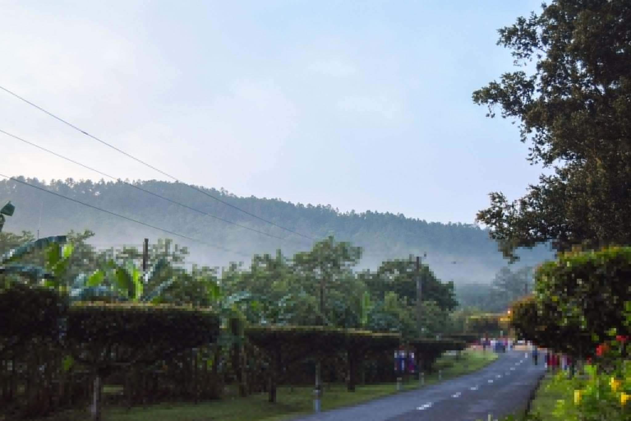 Comunidad El Moncada