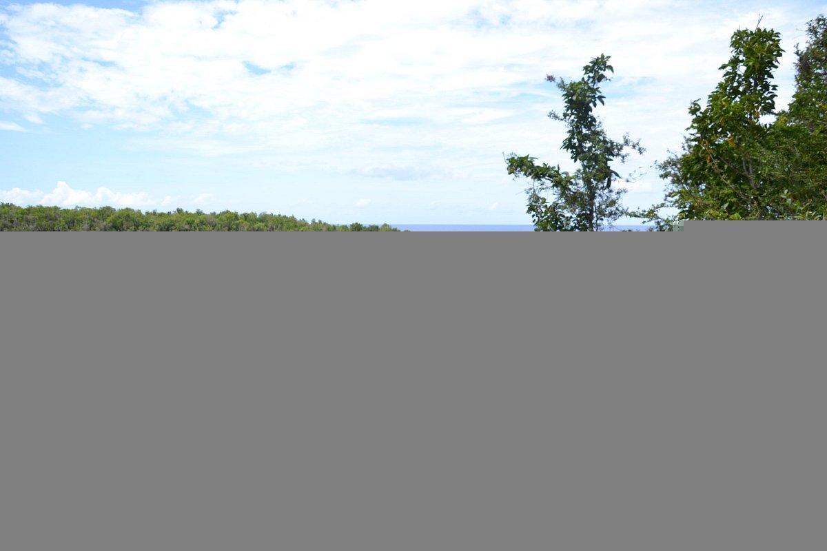 Guajaimico