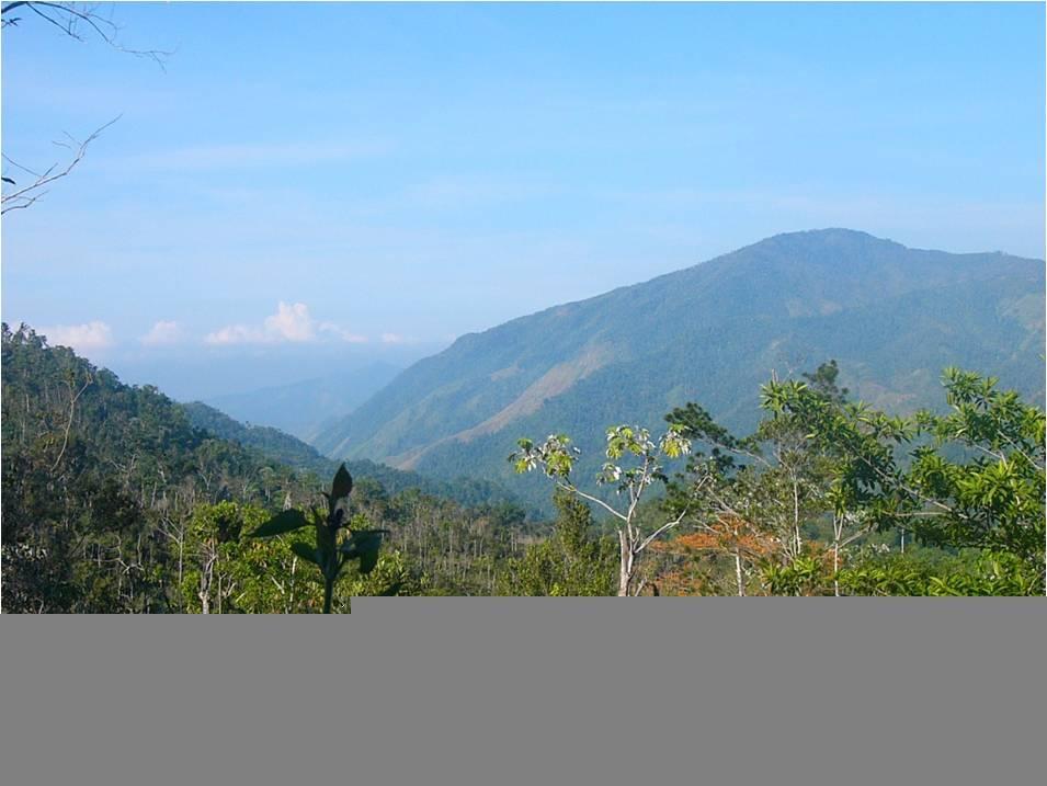 Turquino National Park