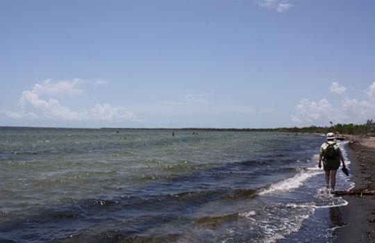 Bibijagua beach
