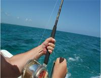 Open-sea fishing