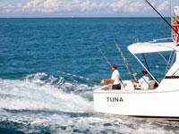 Open Sea Fishing