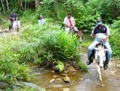 Horseback Riding: Cabalgata Pinar del Rio Sierra del Rosario