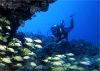 Scuba Diving  Site and Center: Tarara Scuba Diving Center, Havana City