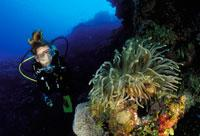 Scuba Diving  Site and Center: Copacabana Scuba Diving, Havana City