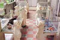 Museums: Museum of Natural Sciences  Tranquilino Sandalio
