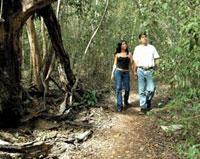 Nature Trails: Aguada de Baga Trail