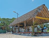 Restaurants: Ranchon Flamingo