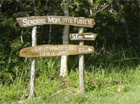 Nature Trails: Morlotte Fustete Trail