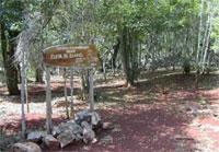 Nature Trails: El Samuel Trail