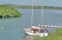 Marinas: Puerto de Vita Marina