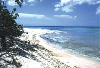 Areas of Natural Interest: Guanahacabibes National Park