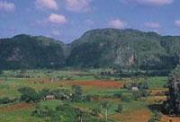 Areas of Natural Interest: Vinales  National Park, Pinar del Rio