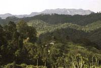 Areas of Natural Interest: Escambray Mountains