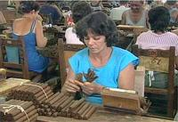 Cigar Factory Tours: Moya Cigar Factory, Granma
