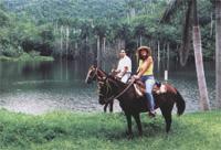 Horseback Riding: La Guabina: Toward the caves and mountain, Pinar del Rio
