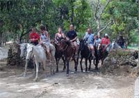Horseback Riding: Horseback  Baconao National Park, Santiago de Cuba
