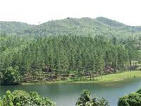 Nature Trails: La Serafina Trail