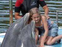 Dolphinarium: Varadero Dolphinarium Blanco key, Varadero Beach