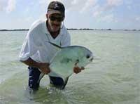 Fishing: Permit or Palometa, Cayo Coco