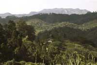 Areas de Interes Natural: Parque Nacional El Cubano