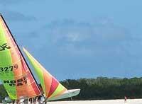 Cuban Keys: Cruz Key