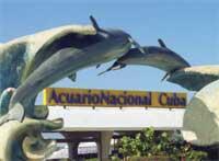 Interesting Places: Acuario Nacional de Cuba, Havana City