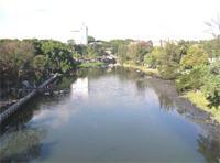 Interesting Places: Almendares Park