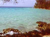 Beaches: La Boca Beach