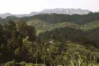 Areas of Natural Interest: Massif of Guamuahaya