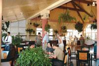 Restaurants: Roof Garden