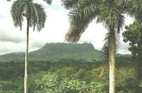 Areas of Natural Interest: El Yunque de Baracoa, Baracoa
