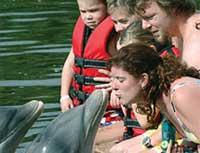 Swimming with Dolphins: Swimming with Dolphins in Varadero, Varadero Beach