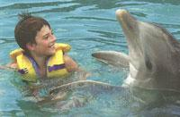 Swimming with Dolphins: Swimming with Dolphins in Holguin, Holguin