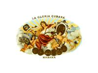 Cuban Cigar: La Gloria Cubana: Cuban Cigar