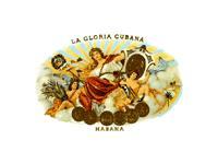 Cuban Cigar: La Gloria Cubana: Cuban Cigar
