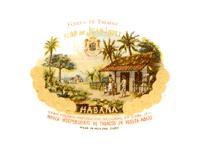 Cuban Cigar: Juan Lopez: Cuban Cigar