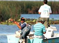 Fishing: Laguna de Leonero
