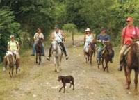 Horseback Riding: La Guabina: Horseback Riding toward the Pre -history