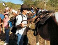 Horseback Riding: Horseback Riding in Guabina Farm, Pinar del Rio