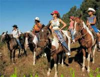 Horseback Riding: Guabina Farm: Horseback riding to Pizarras del Sur