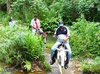 Horseback Riding: Horseback  between river and trees, Pinar del Rio