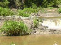 Nature Trails: Salto del Guayabito