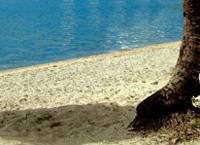 Beaches: La Jaula