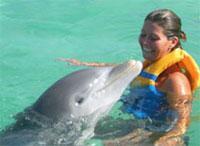 Swimming with Dolphins: Swimming with Dolphin Cayo Largo