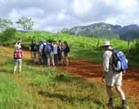 Nature Trails: Palmarito